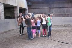 110423_43_Voltige_Training