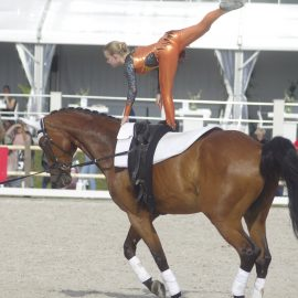 Horse Event 2019